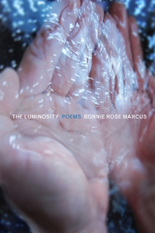 Lumiinosity cover